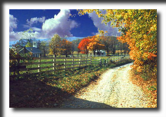 Virginia, horse country, horses, autumn, fall colors, photography, art prints, posters, post cards